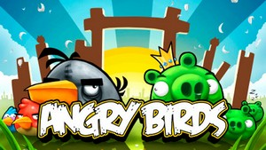 Angry Birds (360х640  Touch screen  Java)